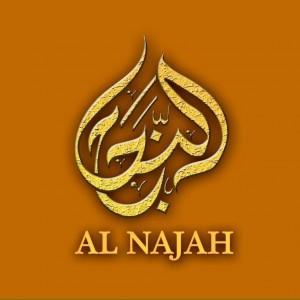 Mektaba Al Najah